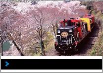 Sagano Romantic Train Sagano Scenic Railway