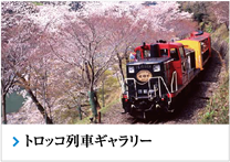Sagano Romantic Train Gallery